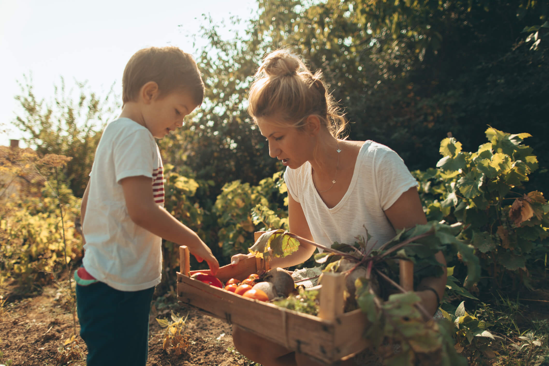 alimentation bio enfant